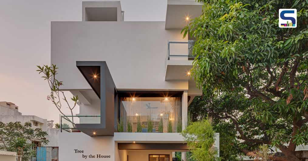Tree By the House | Ashwin Architects